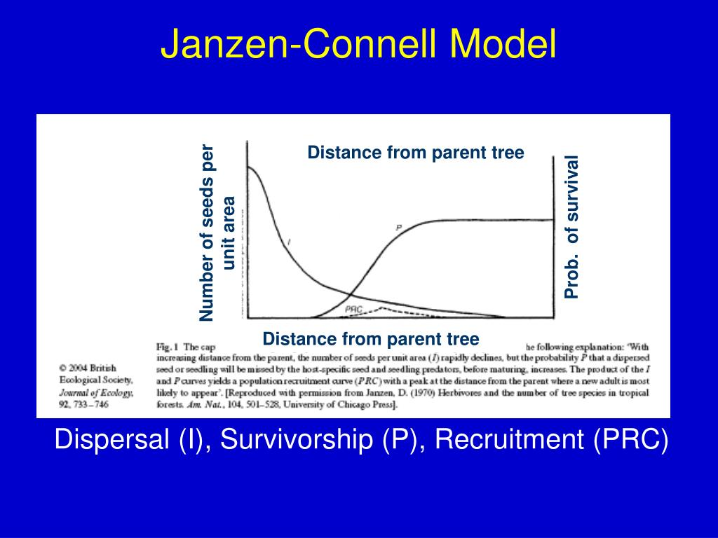 Distance from parent tree