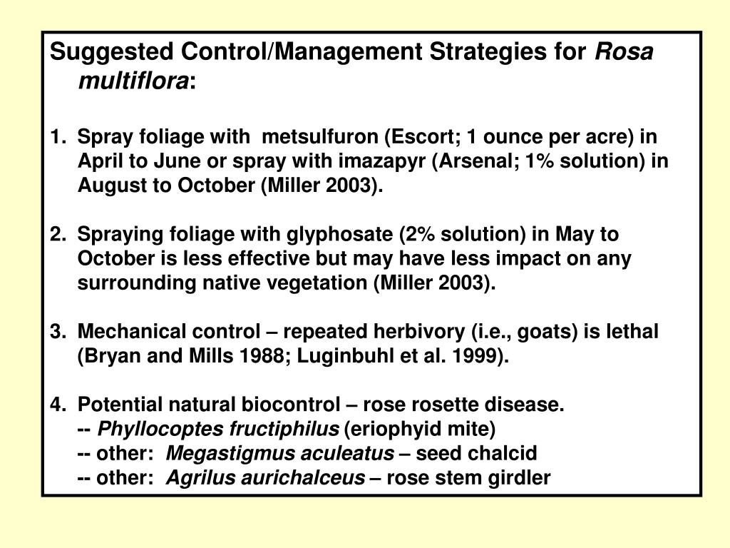 Suggested Control/Management Strategies for