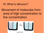 19 what is diffusion