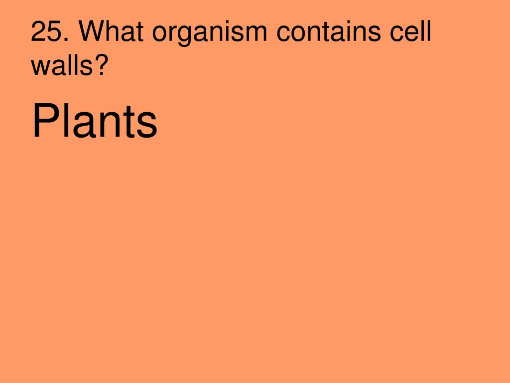 25. What organism contains cell walls?