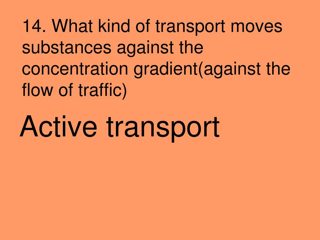 14. What kind of transport moves substances against the concentration gradient(against the flow of traffic)