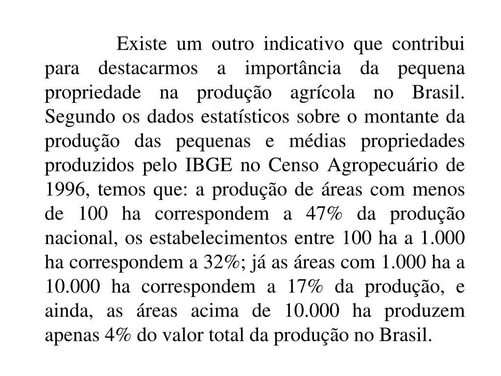 Existe um outro indicativo que contribui para destacarmos a importância da pequena propriedade na produção agrícola no Brasil. Segundo os dados estatísticos sobre o montante da produção das pequenas e médias propriedades produzidos pelo IBGE no Censo Agropecuário de 1996, temos que: a produção de áreas com menos de 100 ha correspondem a 47% da produção nacional, os estabelecimentos entre 100 ha a 1.000 ha correspondem a 32%; já as áreas com 1.000 ha a 10.000 ha correspondem a 17% da produção, e ainda, as áreas acima de 10.000 ha produzem apenas 4% do valor total da produção no Brasil.