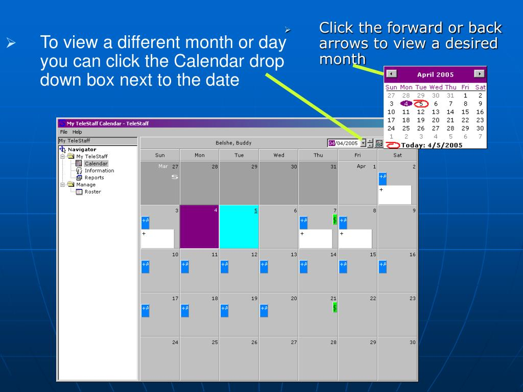 To view a different month or day you can click the Calendar drop down box next to the date