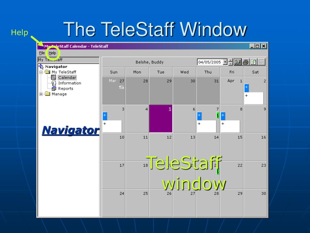 The TeleStaff Window