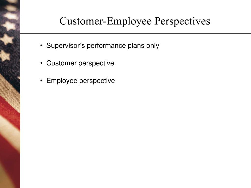 Customer-Employee Perspectives