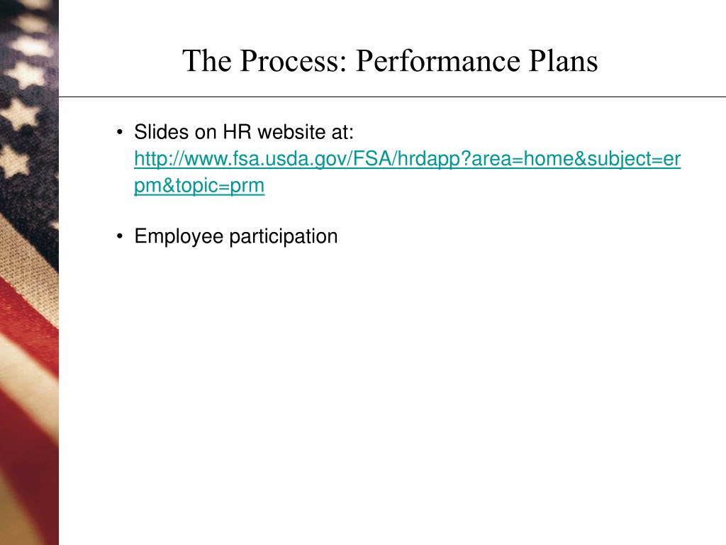 The Process: Performance Plans