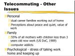 telecommuting other issues