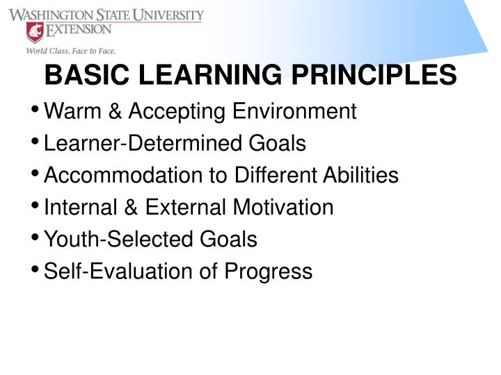 Basic learning principles
