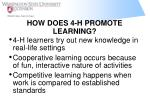 how does 4 h promote learning