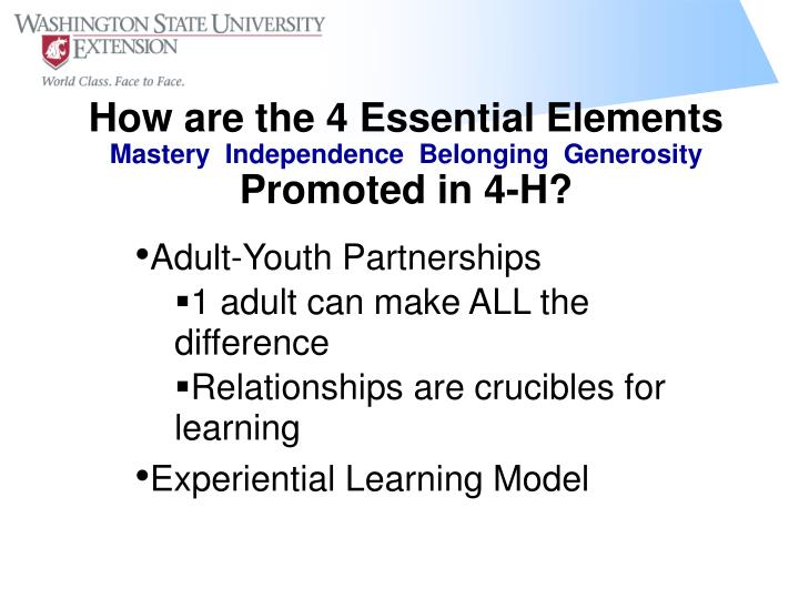 How are the 4 Essential Elements