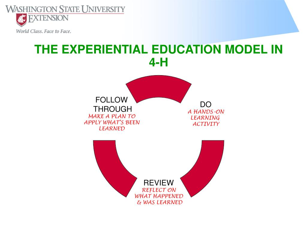 THE EXPERIENTIAL EDUCATION MODEL IN 4-H