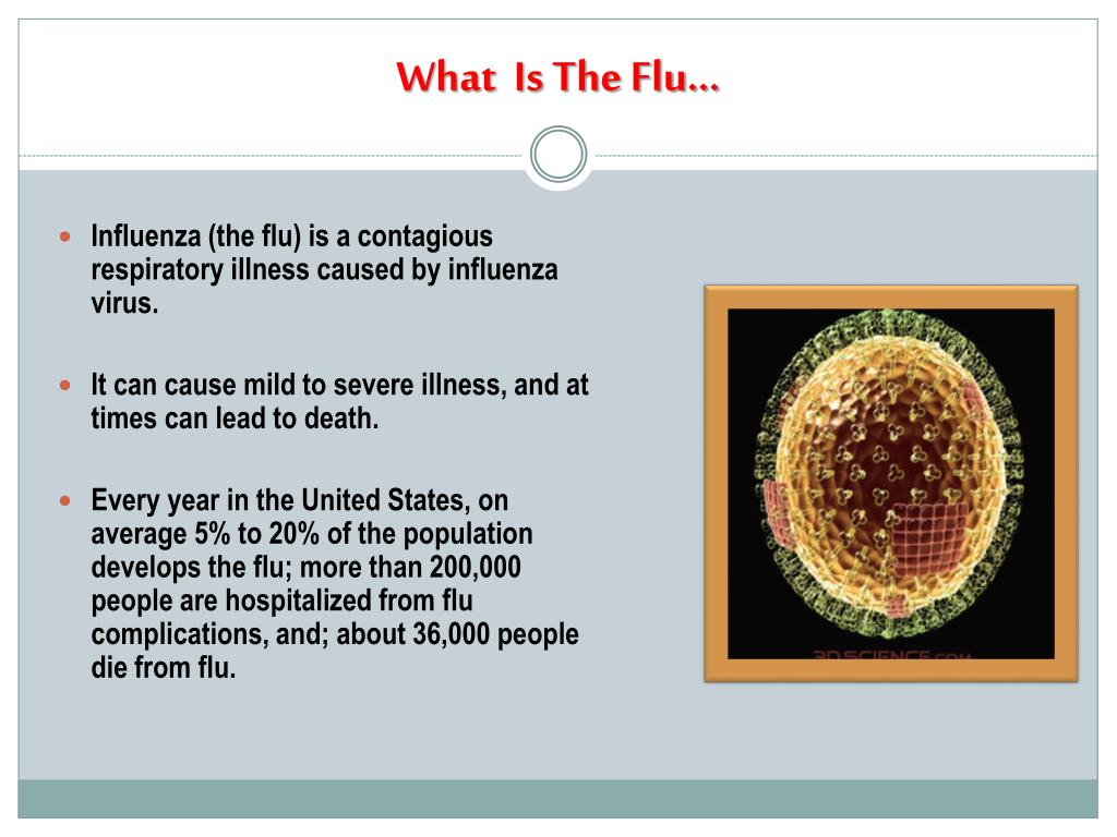 What  Is The Flu…
