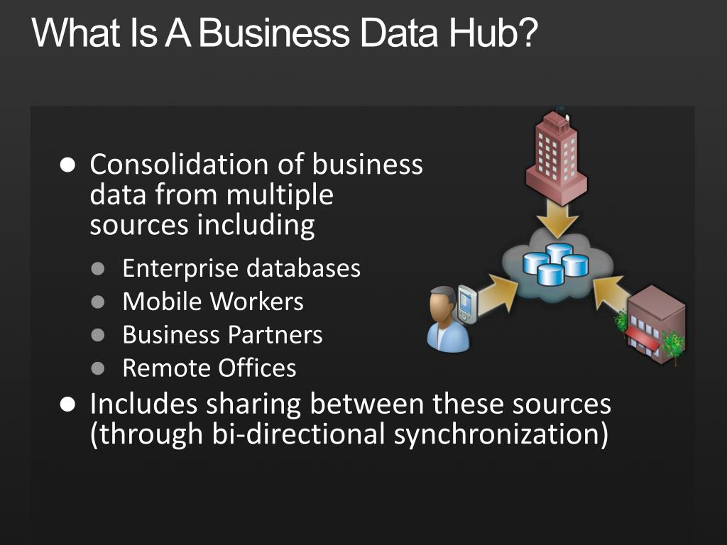 What Is A Business Data Hub?