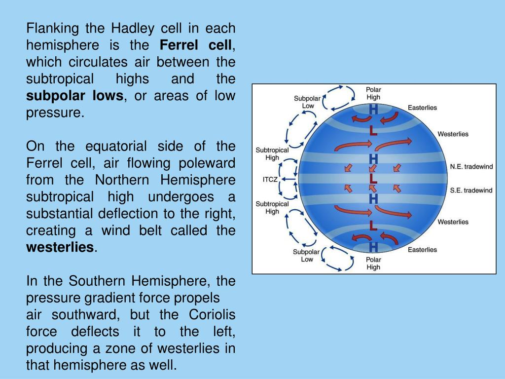 Flanking the Hadley cell in each hemisphere is the