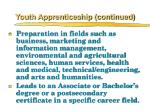 youth apprenticeship continued