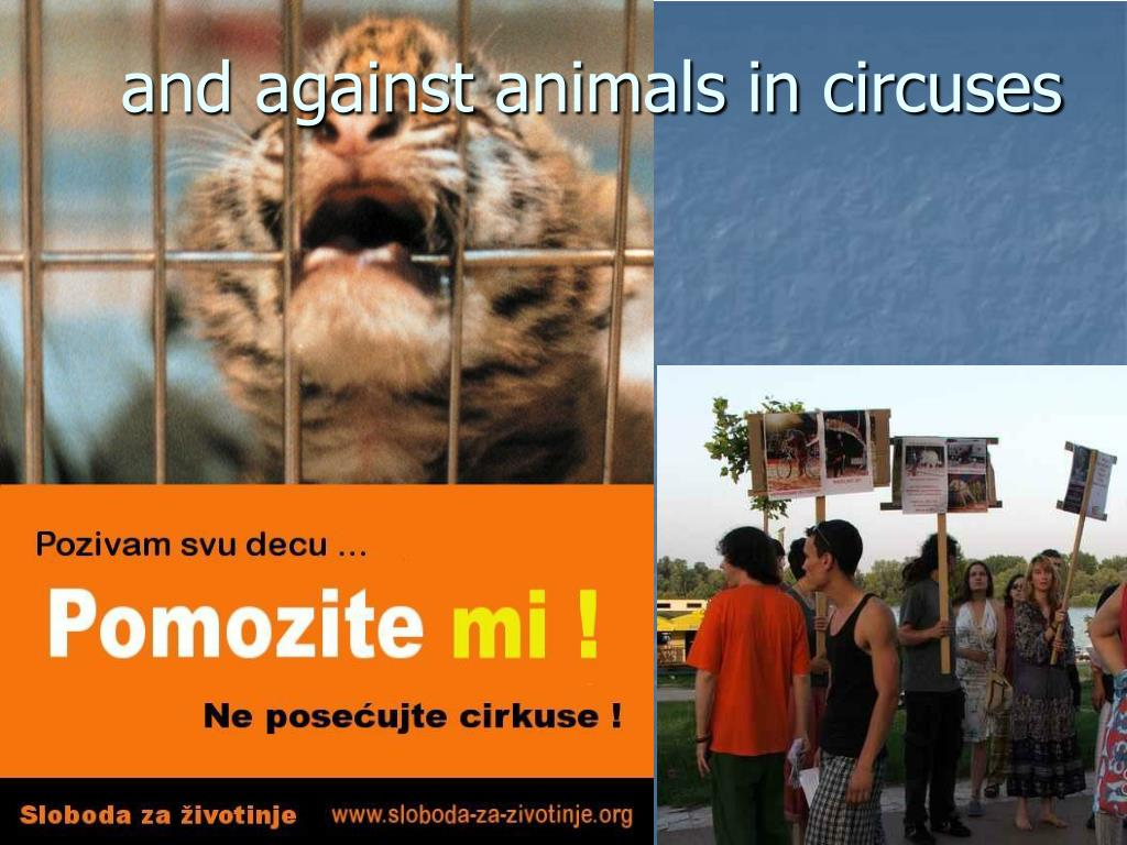 and against animals in circuses