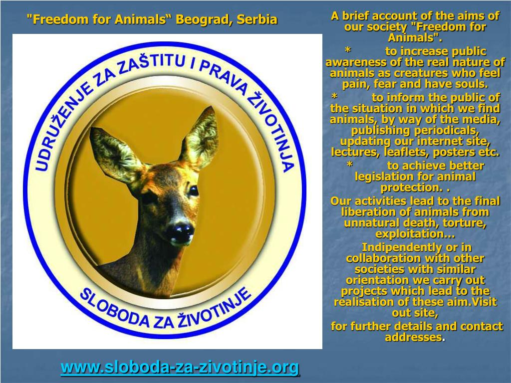 """""""Freedom for Animals"""" Beograd, Serbia"""