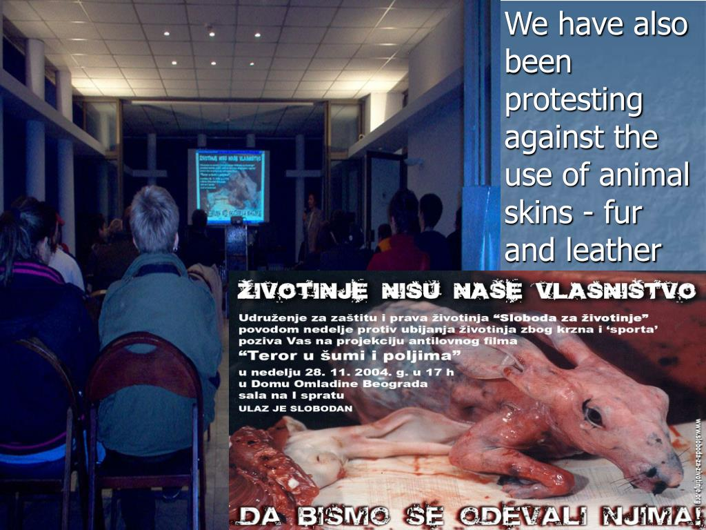 We have also been protesting against the use of animal skins - fur and leather