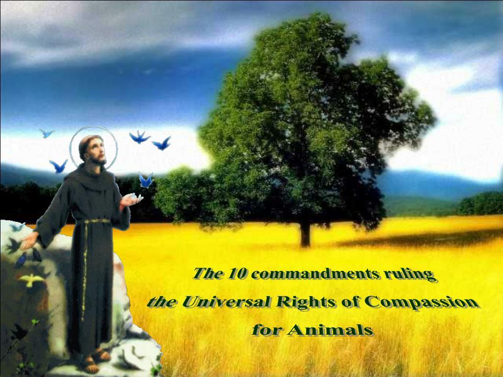 The 10 commandments ruling