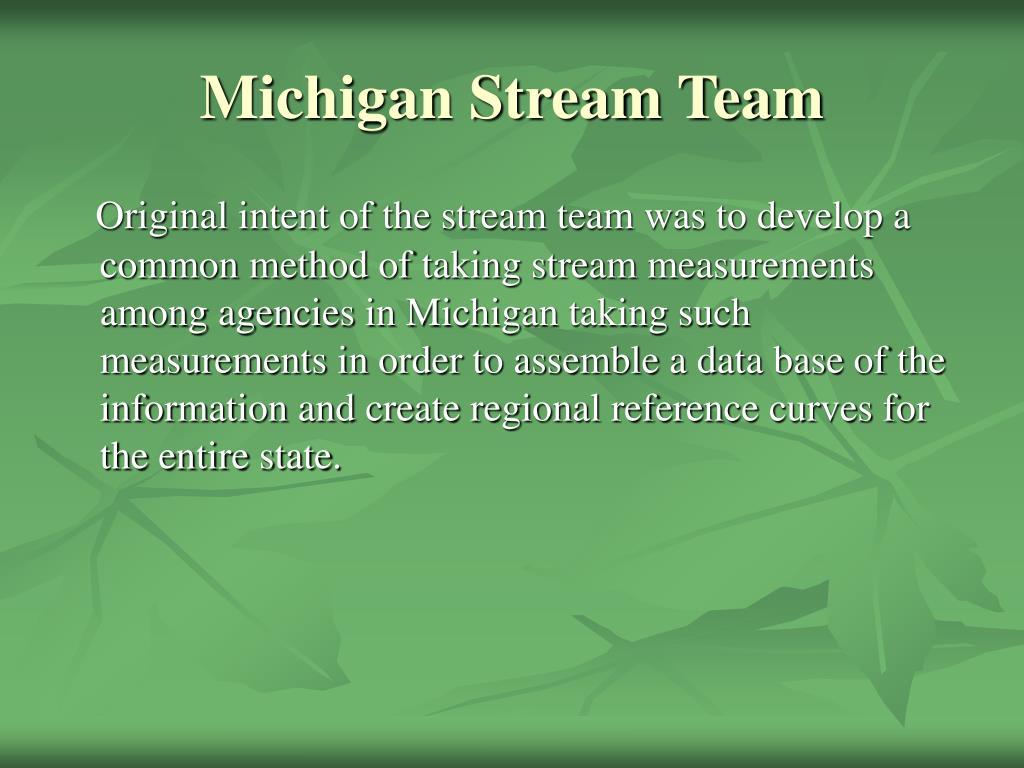 Michigan Stream Team