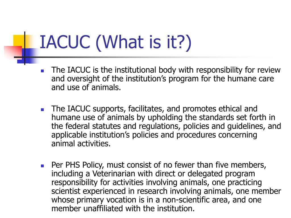 IACUC (What is it?)