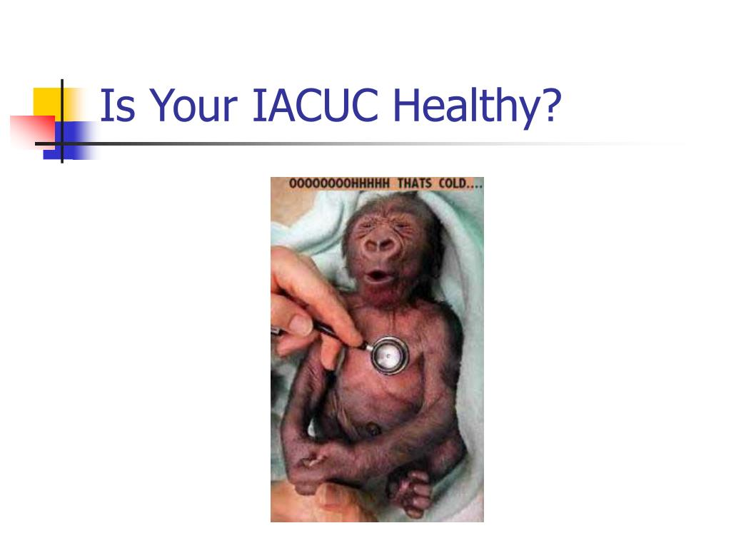 Is Your IACUC Healthy?