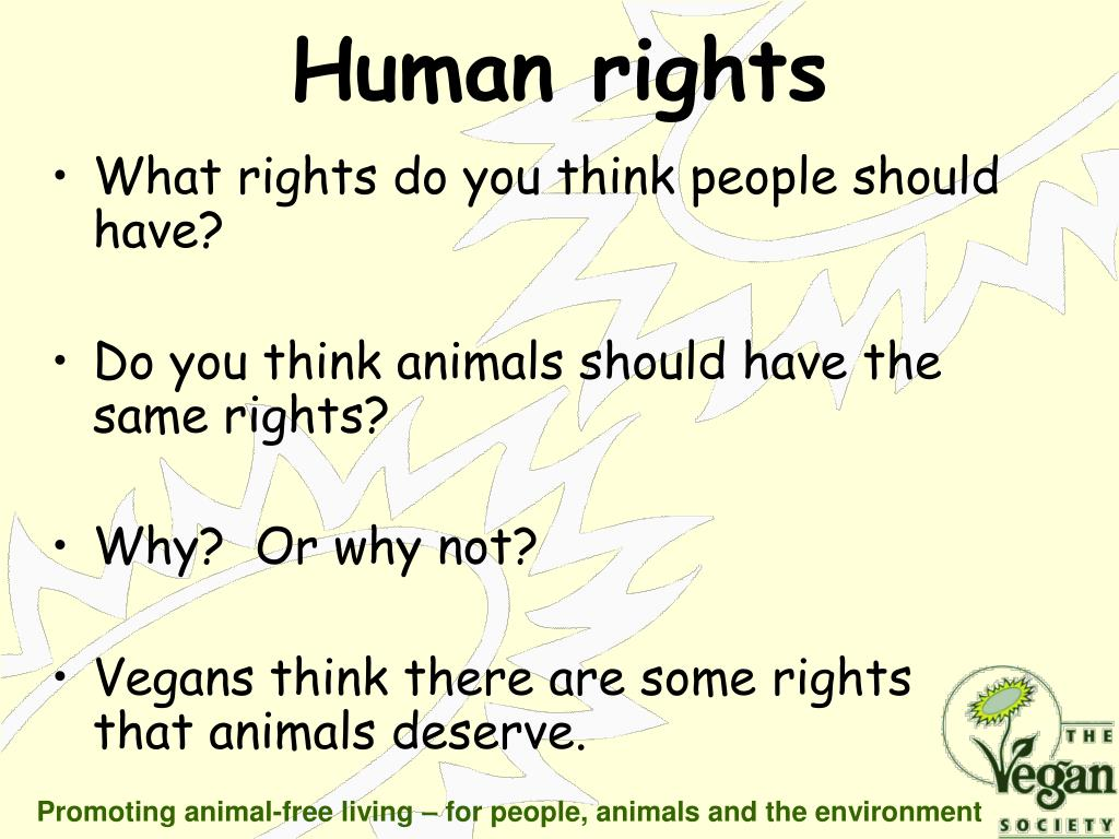 What rights do you think people should have?