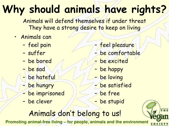 Why should animals have rights
