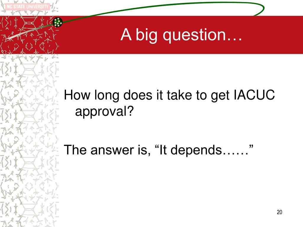 A big question…