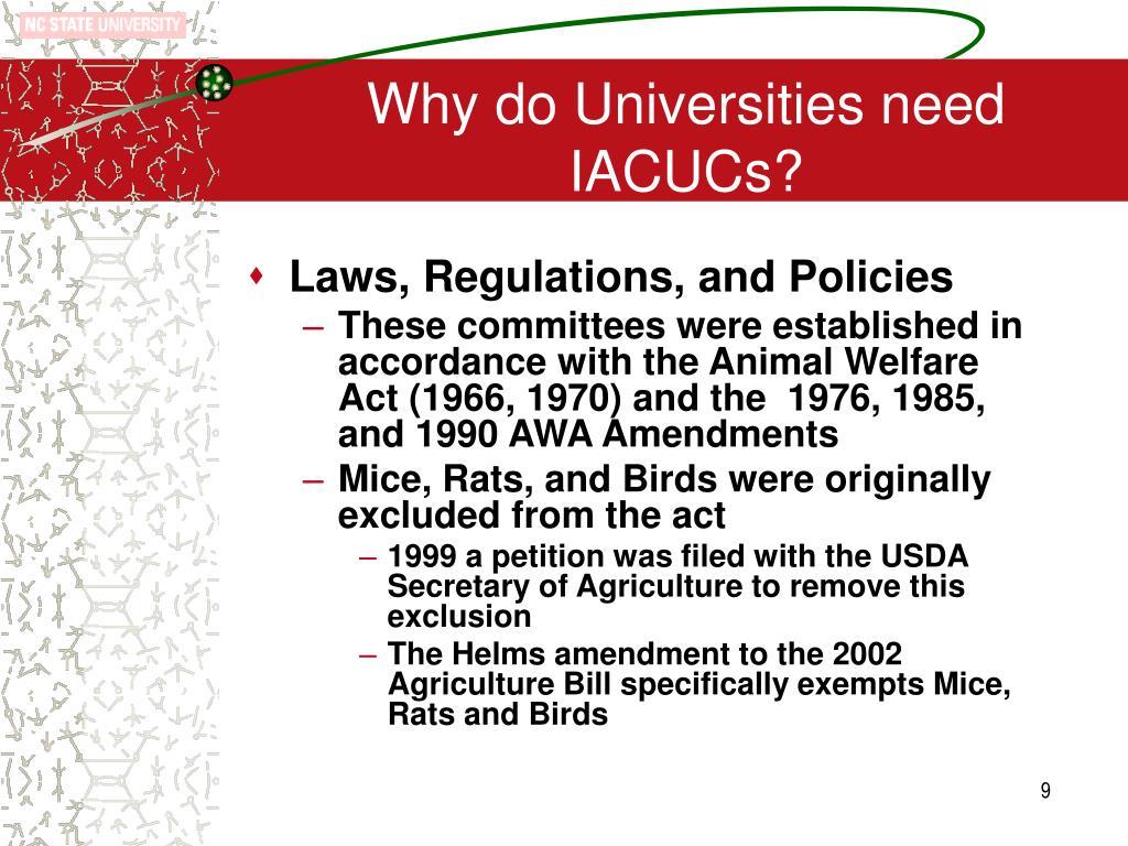 Why do Universities need IACUCs?