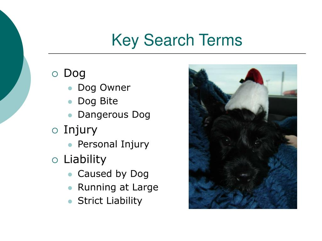 Key Search Terms