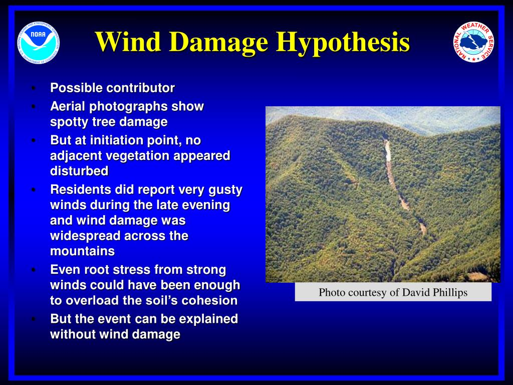 Wind Damage Hypothesis