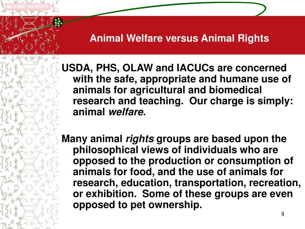 Animal Welfare versus Animal Rights