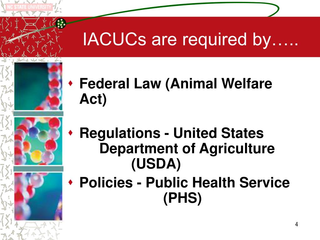 IACUCs are required by…..