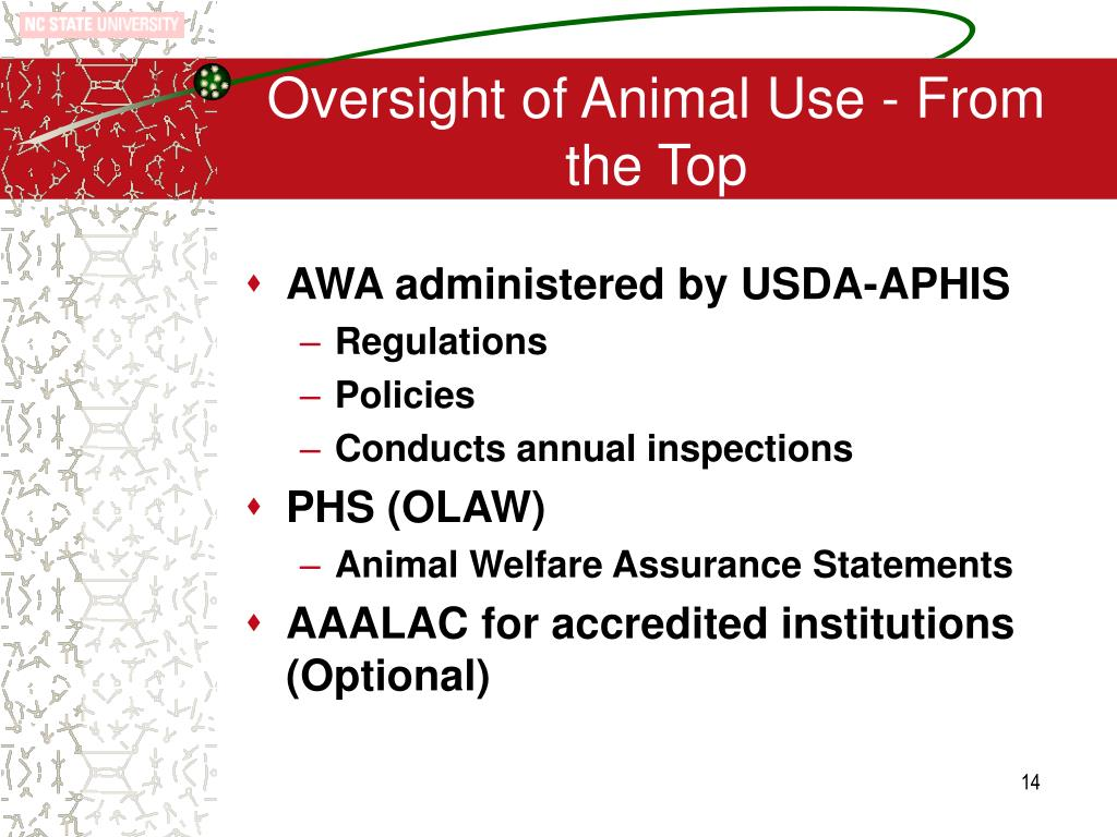 Oversight of Animal Use - From the Top