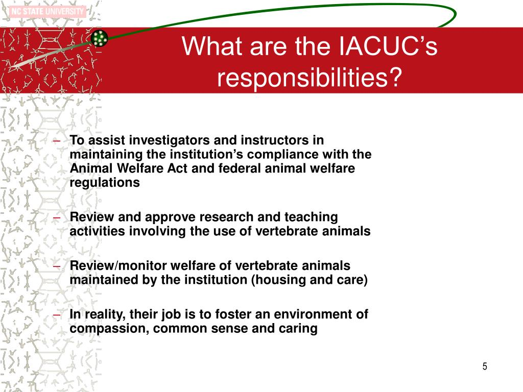 What are the IACUC's responsibilities?