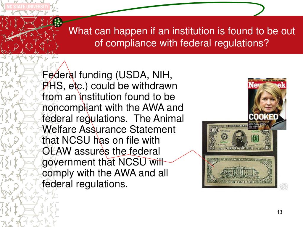 What can happen if an institution is found to be out of compliance with federal regulations?