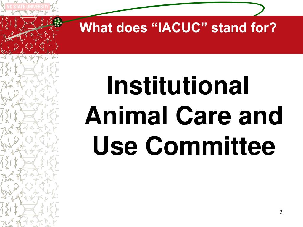 """What does """"IACUC"""" stand for?"""