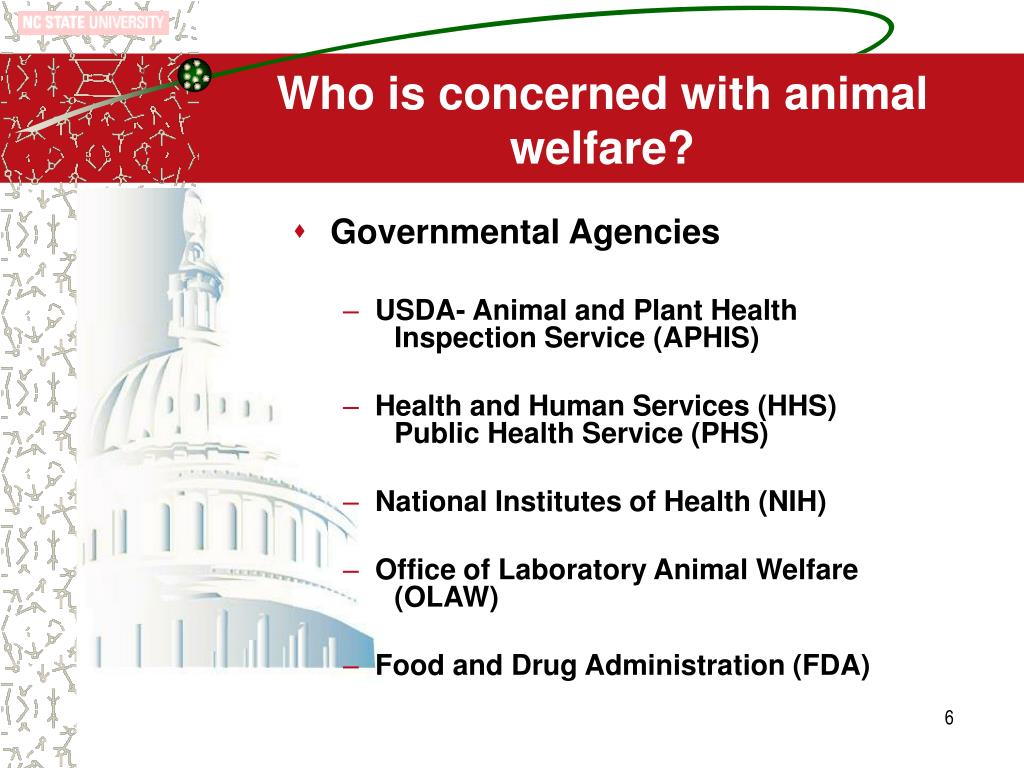 Who is concerned with animal welfare?