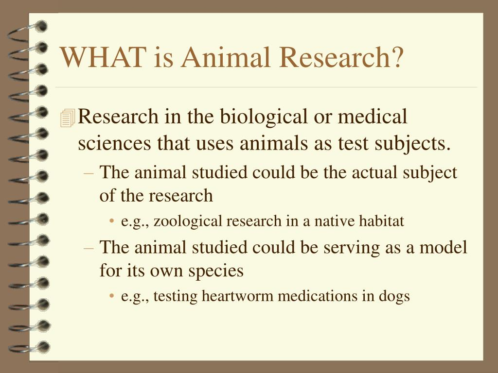WHAT is Animal Research?