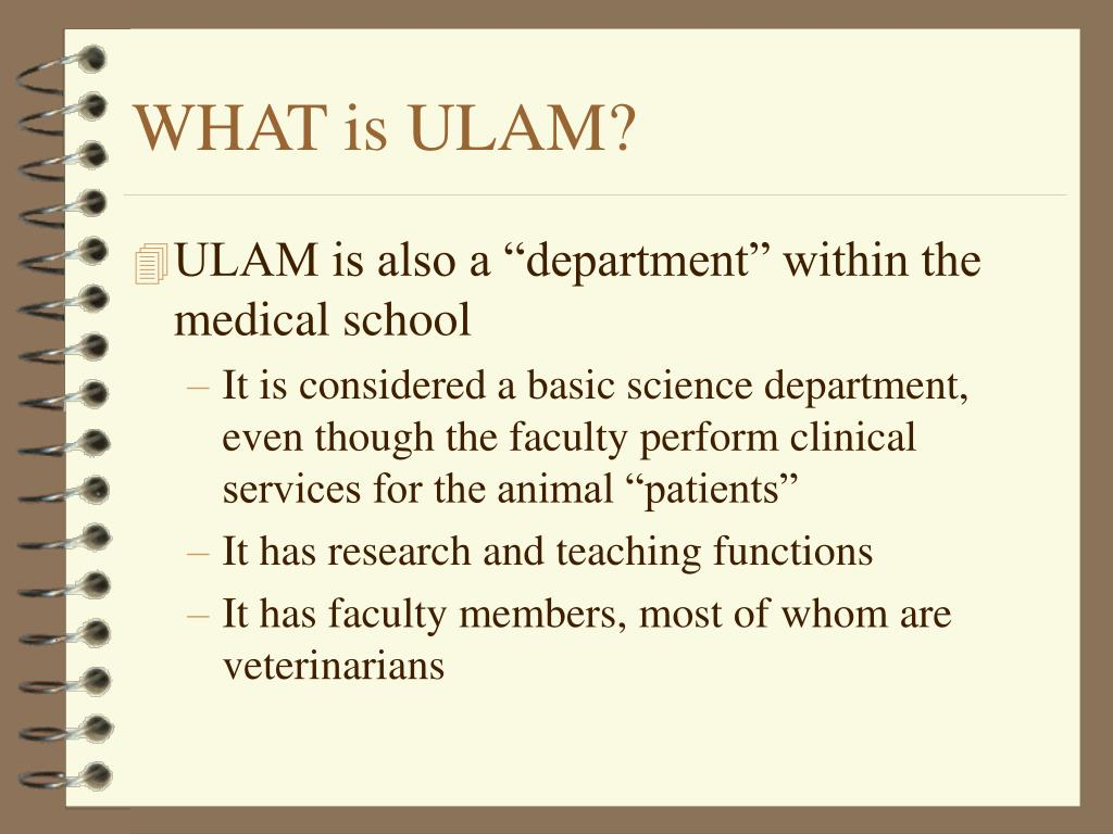 WHAT is ULAM?