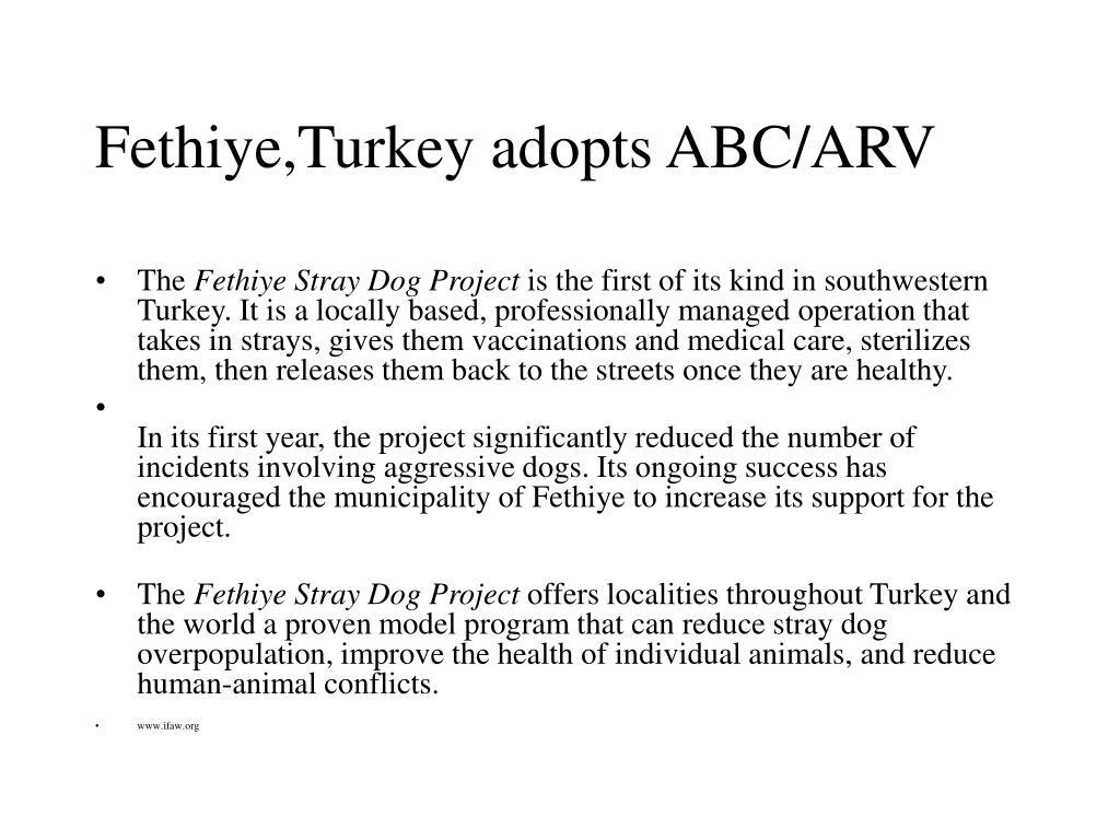 Fethiye,Turkey adopts ABC/ARV