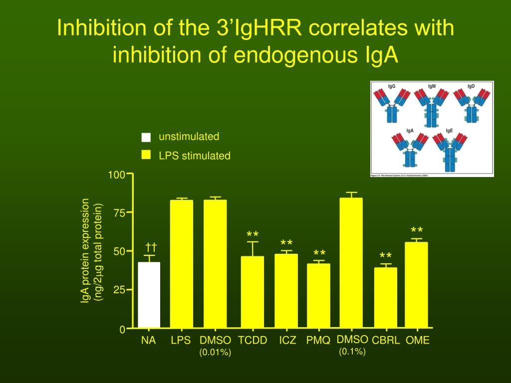 Inhibition of the 3'IgHRR correlates with inhibition of endogenous IgA