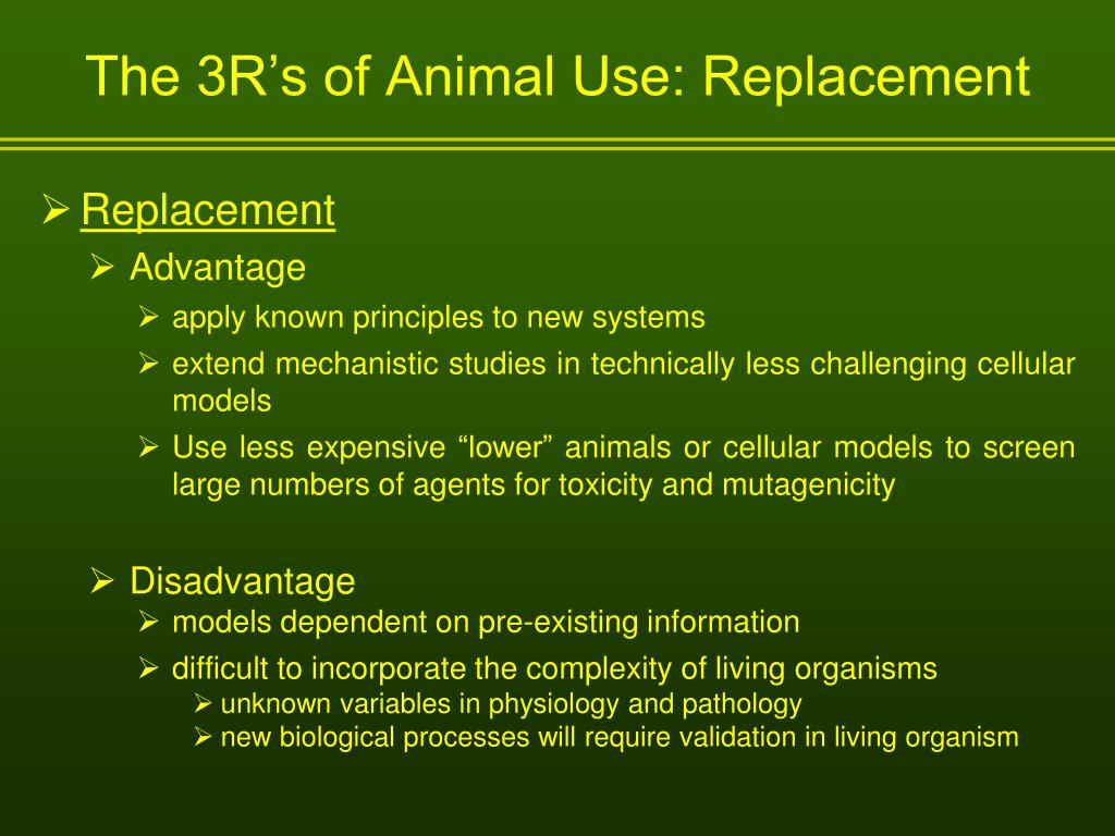 The 3R's of Animal Use: Replacement