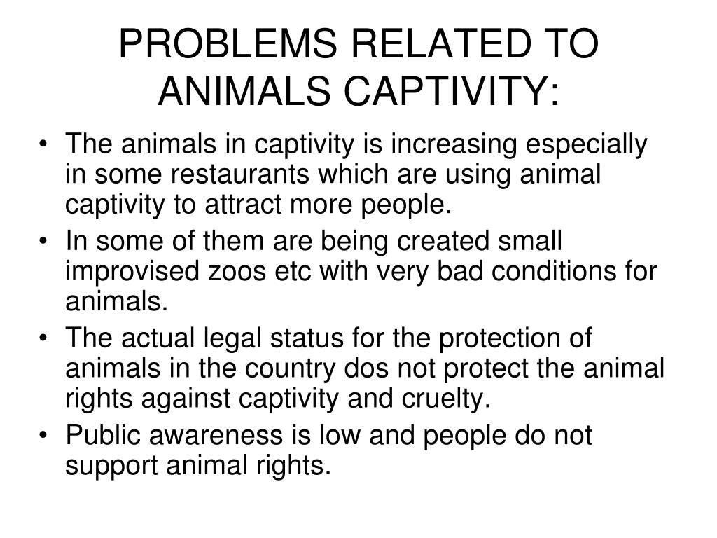 PROBLEMS RELATED TO ANIMALS CAPTIVITY: