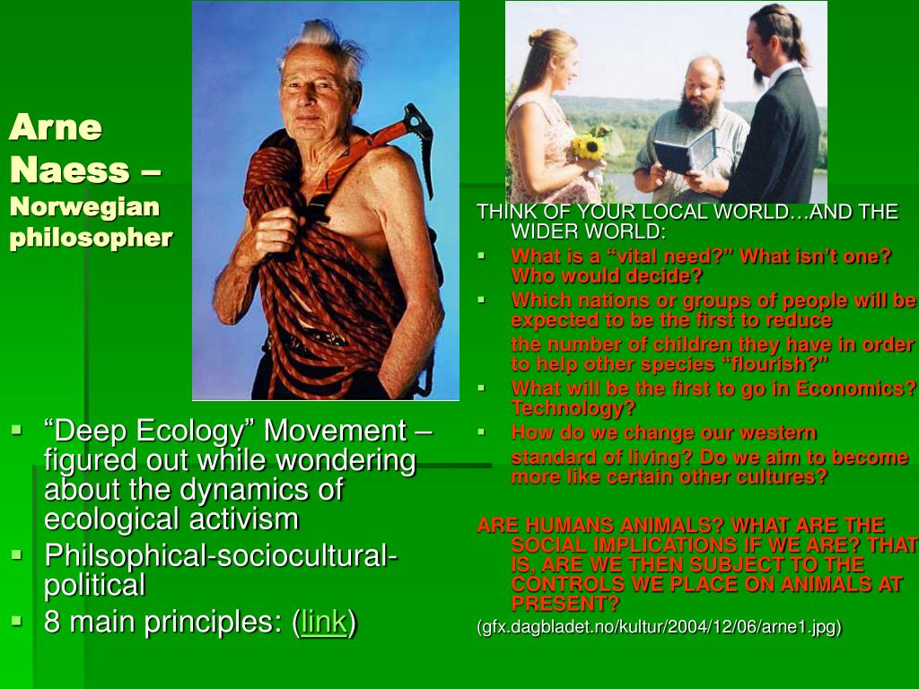 """Deep Ecology"" Movement – figured out while wondering about the dynamics of ecological activism"