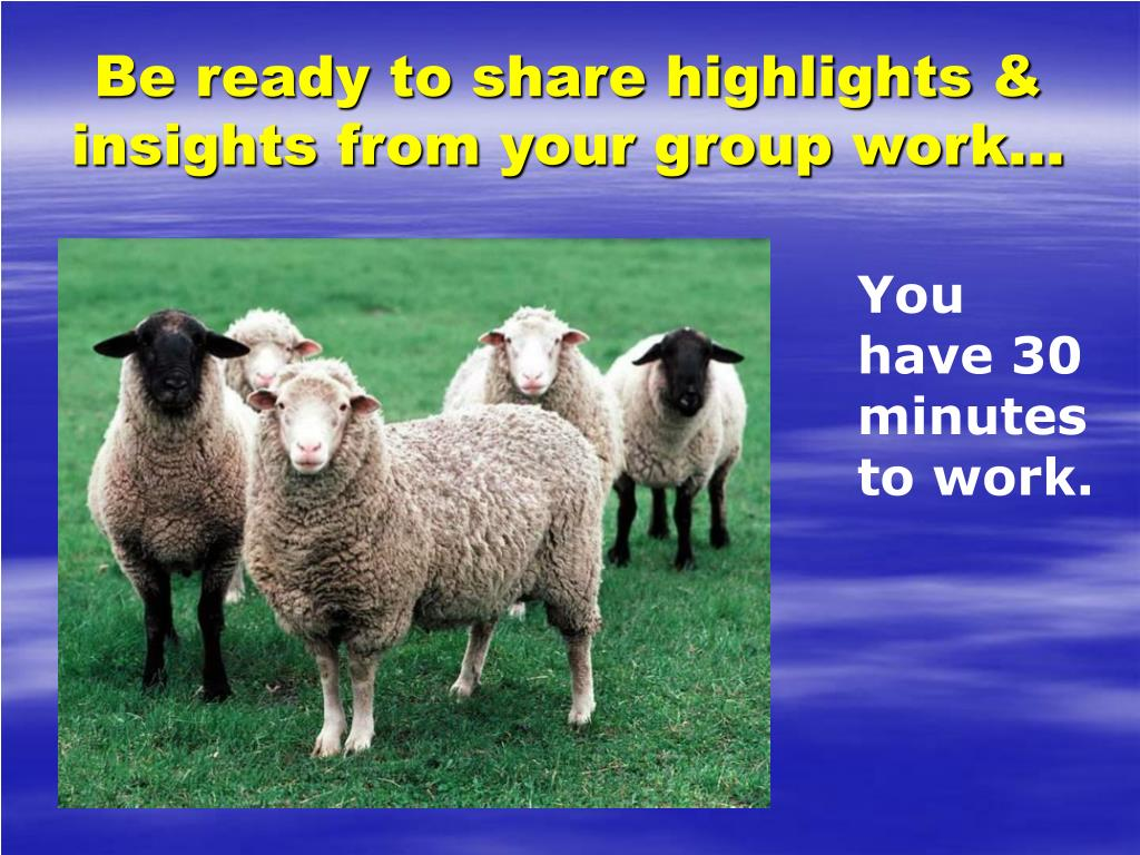 Be ready to share highlights & insights from your group work…
