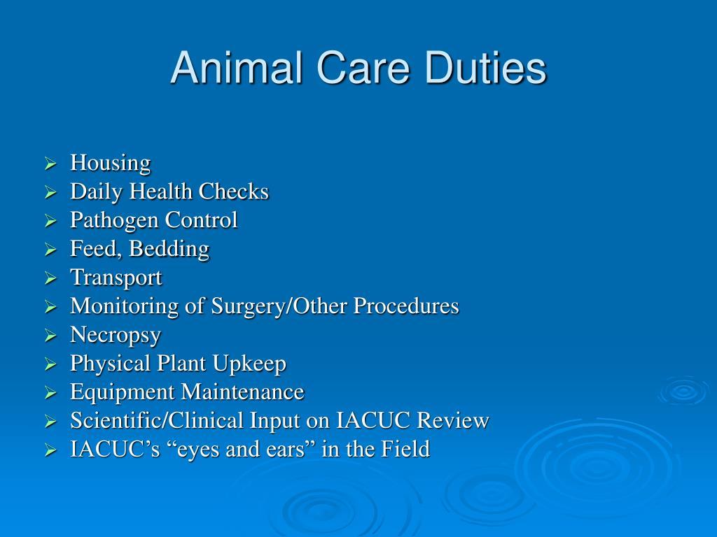 Animal Care Duties