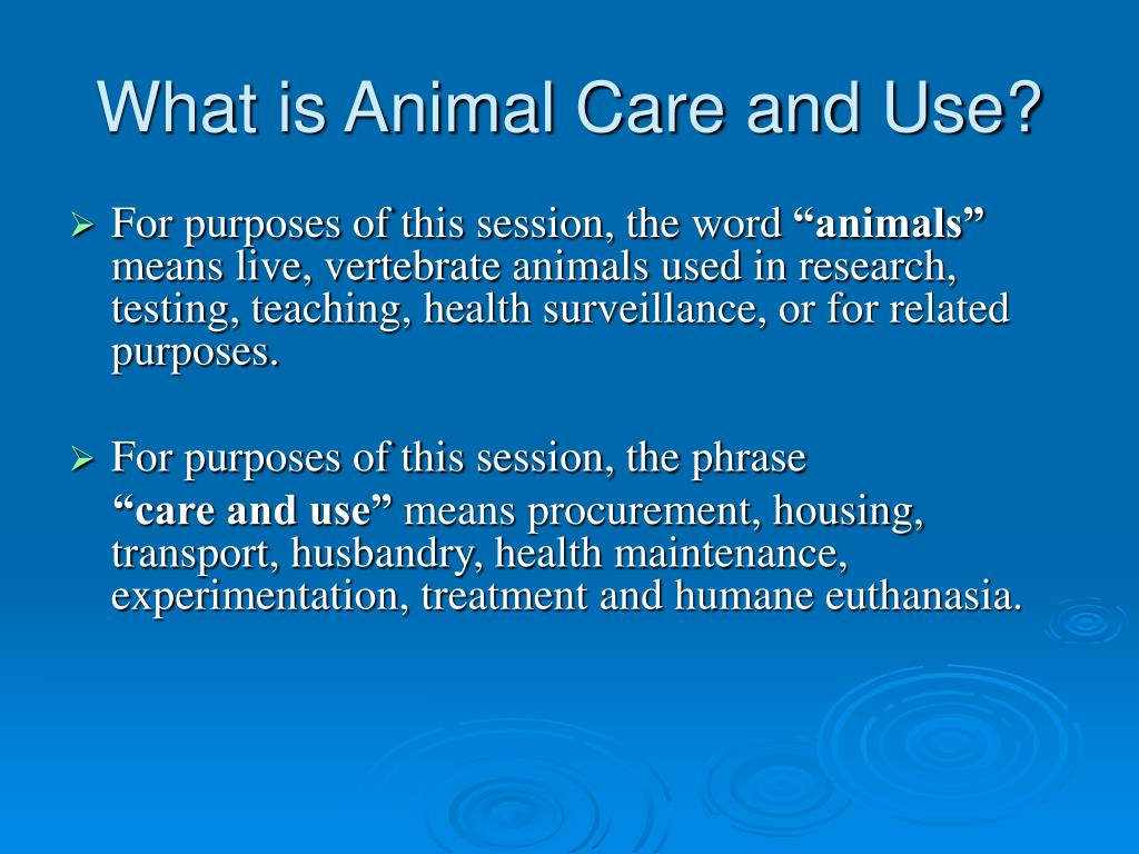 What is Animal Care and Use?