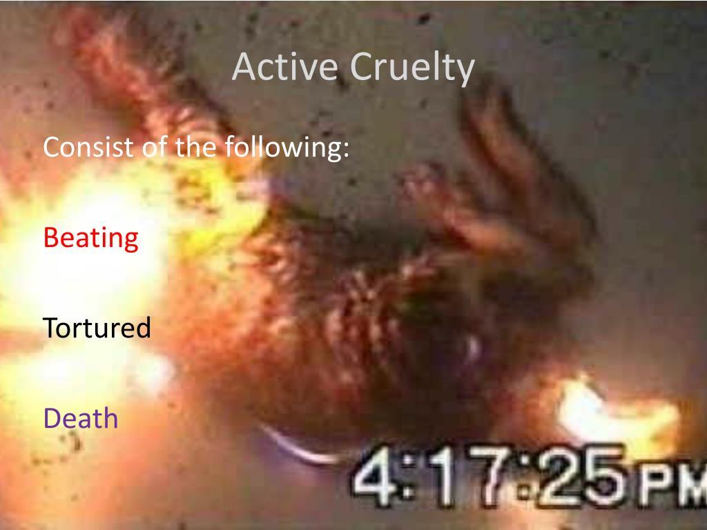 Active Cruelty